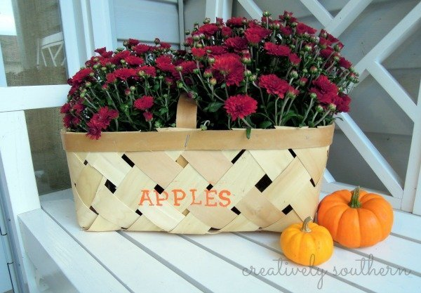 fall mums decor